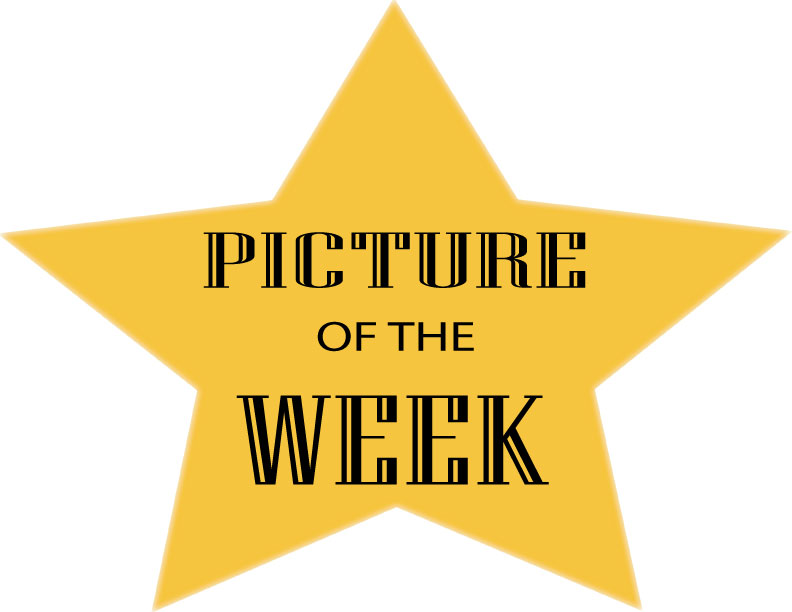 PIC-OF-THE-WEEK-LOGO