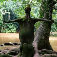 sacred-grove-nigeria